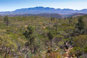Descending Bridle Gap into Black's Gap Walking Camp - Graham Michael Freeman